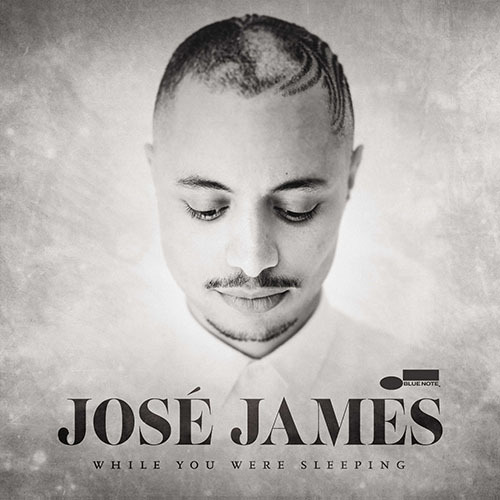 Jose James  / While You Were Sleeping【輸入盤】【アナログ】