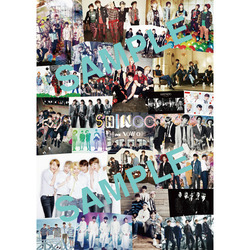 SHINee / SHINee THE BEST FROM NOW ON / ポスター